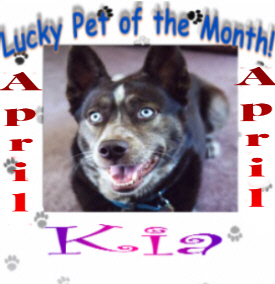 Lucky Pet of the Month